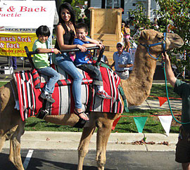 Camel rides, hayrides, inflatables, climbing tower and more at the Apple Stir Fall Harvest Festival at MacQueen Apple Orchard, Cider Mill, Farm Market, and Pick Your Own Apples, Holland, Ohio, west of Toledo